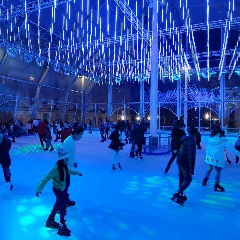 ice skate bir mingham 2019 (3)